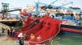 Thủy sản Ninh Thuận trong chiến lược phát triển kinh tế biển