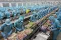 Thủy sản Việt Nam tạo niềm tin tại thị trường châu Âu