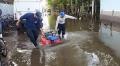 Đảm bảo nguồn cung tôm sau đợt thủy triều ở Honduras