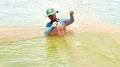 Tăng cường kiểm tra chất lượng thuốc thú y, thủy sản