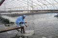 Bạc Liêu: Biến thách thức của biến đổi khí hậu thành cơ hội để phát triển Ngành Thủy sản