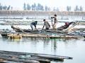 Trung Quốc đóng cửa 30 trang trại nuôi thủy sản phạm pháp