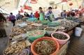 Xuất khẩu cá tra chuyển hướng mạnh vào thị trường Trung Quốc