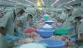 Rộng cửa cho thủy sản xuất khẩu