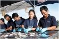 Vắc-xin cho cá tra - ALPHA JECT ® Panga 2 của PHARMAQ đã được cấp phép lưu hành