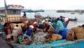 Soi lòng biển qua cảng cá Phước Tỉnh