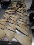 Hải quan Hồng Kông thu giữ 16 kg vây cá mập