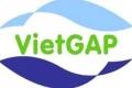 VietGAP bạn đồng hành của người nuôi cá tra