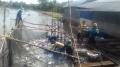 Xây dựng thương hiệu các sản phẩm thủy sản Bến Tre