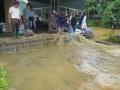 35 lồng cá 4 tỷ đồng bị cuốn trôi bởi thủy điện Tuyên Quang xả lũ