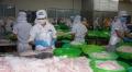 Thị trường và tiêu chuẩn tác động đến hành vi doanh nghiệp