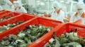 Nhiều cơ hội xuất khẩu nông, lâm, thủy sản vào Ukraine