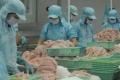 XK cá tra sang Mỹ giảm mạnh do Farm Bill
