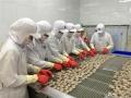 Thuỷ hải sản Việt Nam và triển vọng xuất khẩu 30 tỷ USD