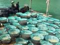 2.000m3 cát xốp phục vụ xuống giống ngao giá mỗi ngày