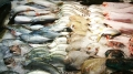 Trung Quốc: Nhu cầu hải sản ngày càng tăng