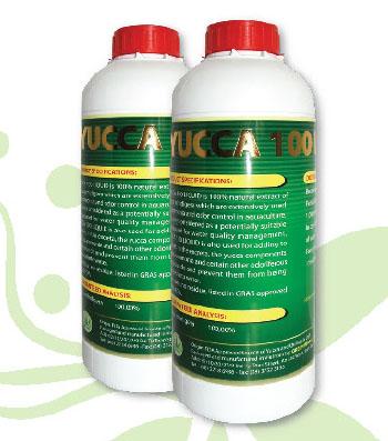 Yucca 100 Liquid