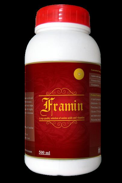 Framin 500